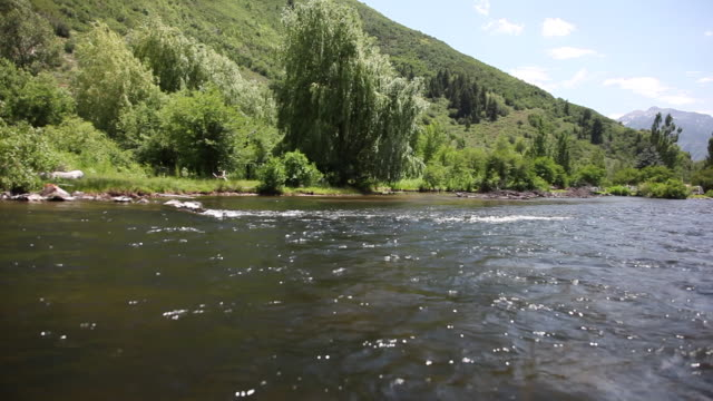 stockvideo's en b-roll-footage met ws pov view of green hills near provo river / sundance, provo river, utah, usa - provo