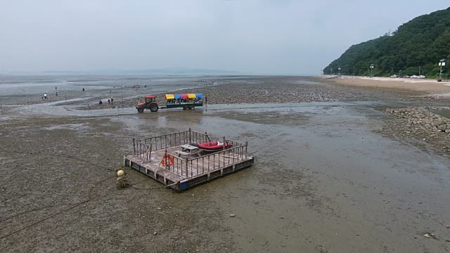 view of group of people touring mud flat in jonghyeon fishing village - floating moored platform stock videos & royalty-free footage