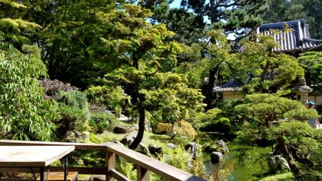 vídeos de stock, filmes e b-roll de view of hagiwara japanese tea garden from tea house in golden gate park downtown san francisco california september 27 2017 - washitsu