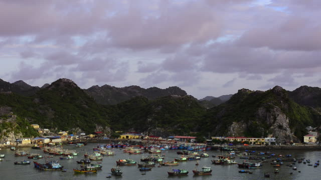 WS View of Halong Bay with Junks at Cat Ba during sunrise / Ha Long Bay, Viet Nam