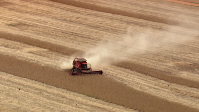 ws aerial view of harvesting in field with machine / brazil - combine harvester stock videos & royalty-free footage
