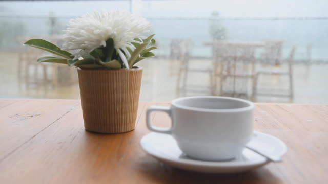view of having a relaxed coffee time in a hotel - コーヒーカップ点の映像素材/bロール