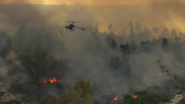 ws aerial view of helicopter flying over fire and smoke burning forest and pull out to reveal fire and helicopter elevating in sky in tuscaloosa county / alabama, united states - hubschrauber stock-videos und b-roll-filmmaterial