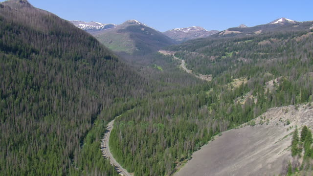 stockvideo's en b-roll-footage met ws aerial ts view of highway in dark trees at yellowstone national park / wyoming, united states - yellowstone national park