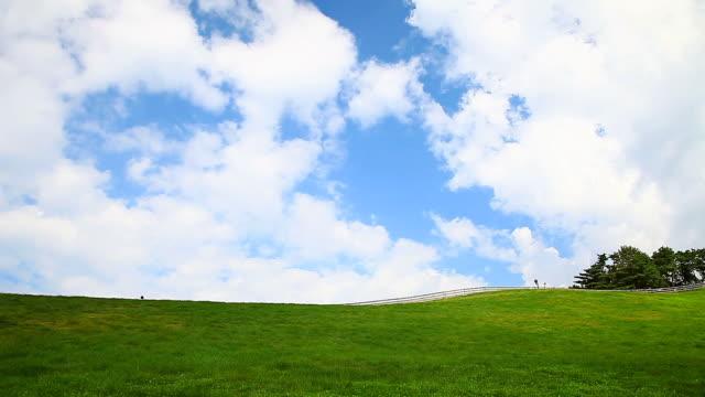 ws view of hill in daegwallyeong yangtte pasture (sheep farm) / pyeongchang, gangwon do, south korea - hill stock videos & royalty-free footage