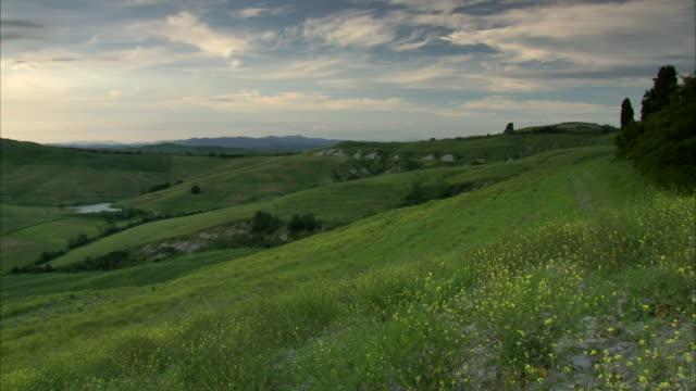ws pan view of hills in tuscan countryside in the sunset / siena, tuscany, italia - toscana bildbanksvideor och videomaterial från bakom kulisserna