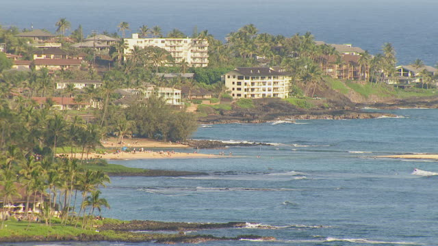 vidéos et rushes de ws aerial view of homes and hotels on beach on island of kauai / hawaii, united states - palmier