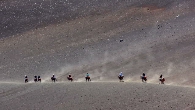 ws montage view of horse riding on sliding sands trail / haleakala, haleakala national park, the kauai island, hawaii, usa - 数匹の動物点の映像素材/bロール