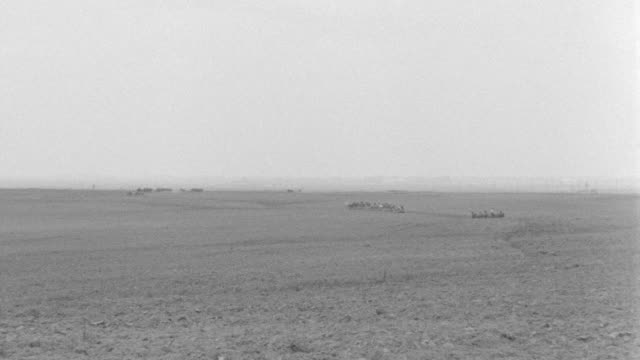 ws view of horses and mules plowing field - arbeitstier stock-videos und b-roll-filmmaterial