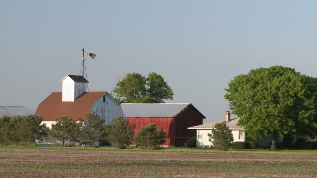WS View of house with barn and shed in field / Newark, Illinois, USA