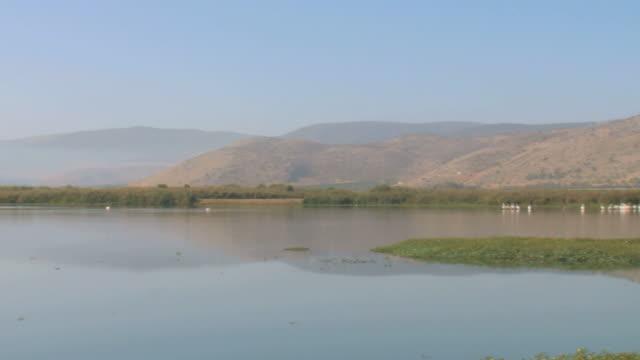 vidéos et rushes de ws pan view of hula valley / hula valley, upper galilee, israel  - étang