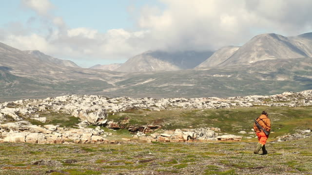ws pan view of hunter walking towards mountains and rocky fields with blue sky / torgat mtns, labrador, canada - wiese stock videos & royalty-free footage