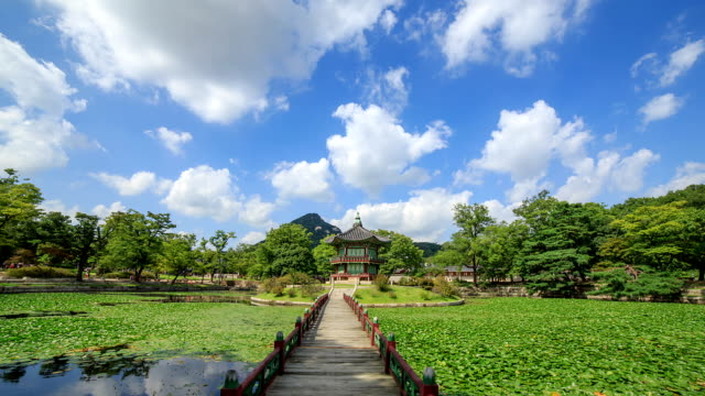 stockvideo's en b-roll-footage met view of hyangwonjeong(gazebo) and water garden is full of lotus leaf in gyeongbokgung(ancient palace) - gazebo