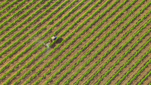 WS AERIAL ZI DS View of insecticide spraying in field / New South Wales, Australia