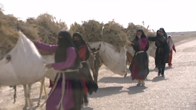 view of iraqi peasant women driving a donkey train to market on a road in the desert. the women are dressed in a colourful dresses beneath a black... - iraq stock videos & royalty-free footage