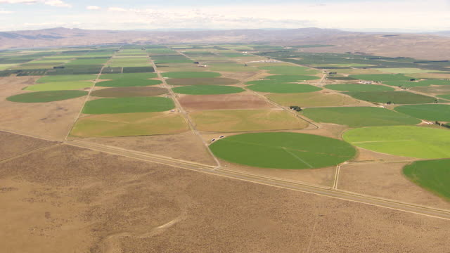 WS AERIAL View of irrigation circles patterns in front of hills / Washington, United States