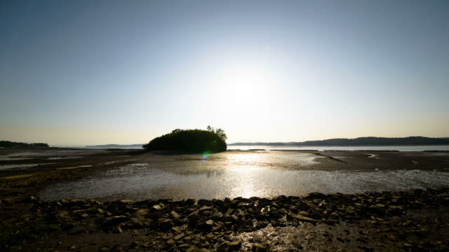 ws t/l view of island middle of mud flat at sun setting / sacheon, gyeongsangnam-do, south korea - mud flat stock videos and b-roll footage