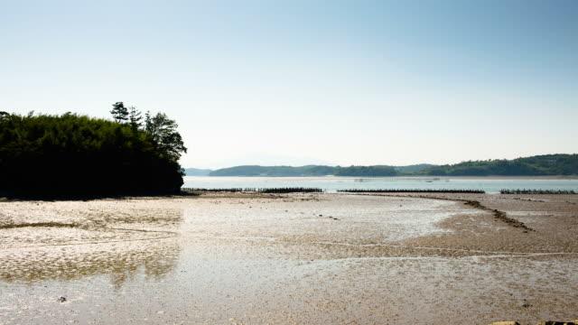 ws t/l view of island of mud flat / sacheon, gyeongsangnam-do, south korea - mud flat stock videos and b-roll footage