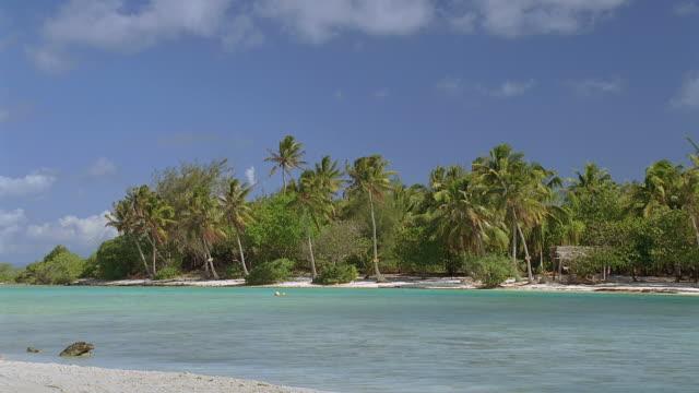 vídeos y material grabado en eventos de stock de ws view of island with palm trees / bora bora, tahiti  - territorios franceses de ultramar
