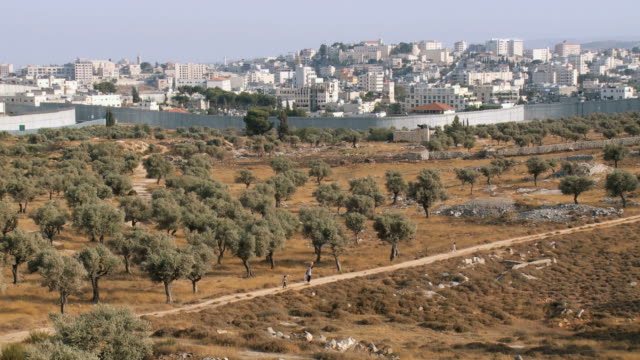 ws view of israeli west bank wall at beit lehem area / jerusalem, judea, israel - west bank stock videos & royalty-free footage