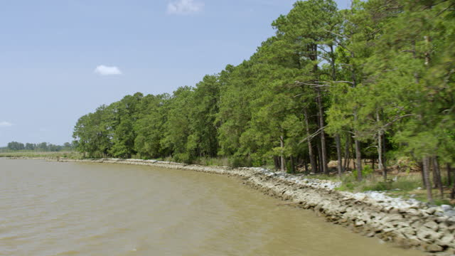 vídeos de stock e filmes b-roll de ws aerial pov view of james river with trees in background / jamestown, virginia, united states - jamestown virginia