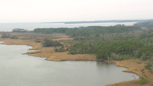 ws aerial view of jockey's ridge state park with lake/ north carolina, united states - seeufer stock-videos und b-roll-filmmaterial