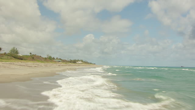 stockvideo's en b-roll-footage met ms aerial view of jupiter beach and birds and pelicans flying off shore / jupiter, beach florida, united states - gulf coast states