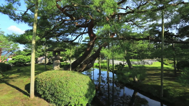 ms pan view of karasakinomatsu and kasumigaike in japanese garden kenrokuen, great gardens of japan / kanazawa, ishikawa, japan - kanazawa stock videos and b-roll footage