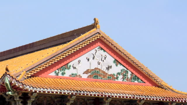 ms zi view of kek lok si temple roof / ayer hitam, penang, malaysia - animal representation stock videos & royalty-free footage