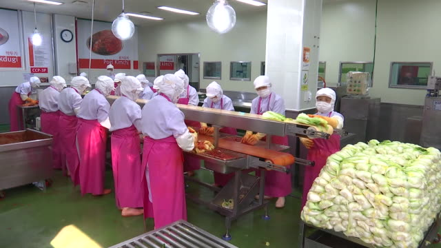 view of kimchi production line at kimchi factory (popular traditional fermented korean side dish) - conveyor belt stock videos & royalty-free footage