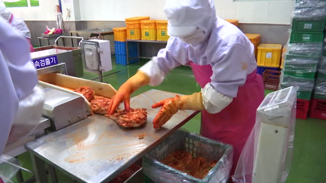 View of Kimchi production line (Popular traditional fermented Korean side dish)