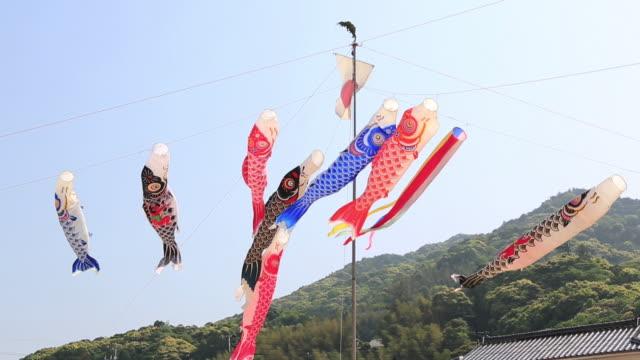 ws view of koinobori, carp streamers flying in wind / matsue, tottori prefecture, japan  - kindertag stock-videos und b-roll-filmmaterial