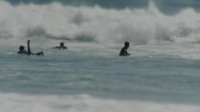 ws pan view of laguna beach with surfers ducking wave / laguna beach, california, usa - kelly mason videos video stock e b–roll