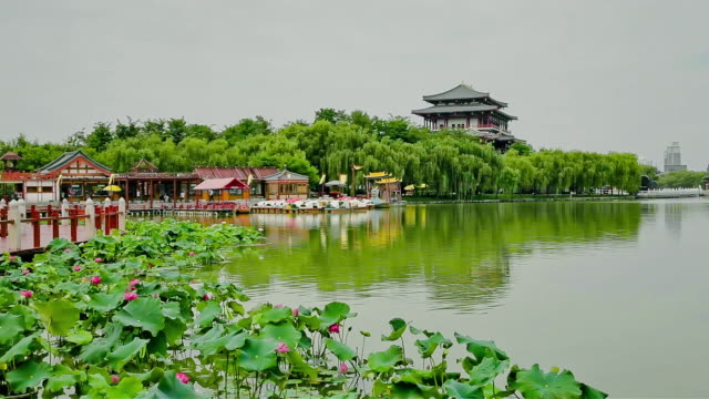 vidéos et rushes de ws view of lake in chinese park / xian, shaanxi, china  - chinois