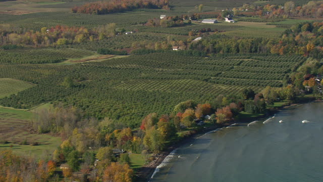 WS AERIAL ZI View of Lake Ontario shoreline with fields / New York, United States