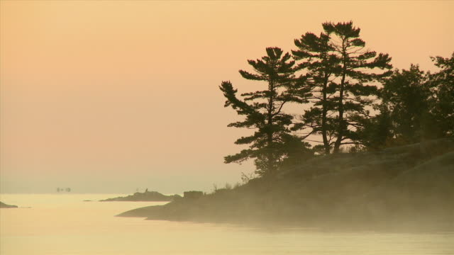 ws view of land with pines at mist / killarney, ontario, canada - ontario canada stock videos & royalty-free footage