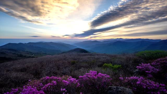 View of landscape and azaleas on Jiri Mountain at sunset