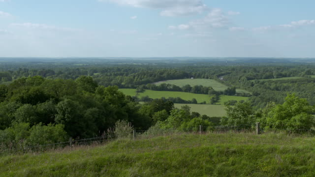 WS View of landscape around Highclere Castle / Hampshire, United Kingdom