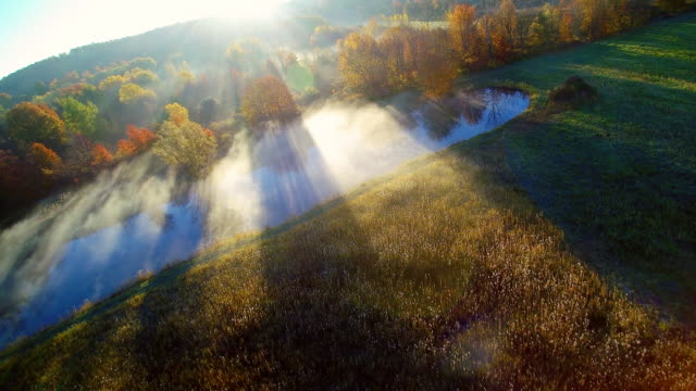 WS AERIAL POV View of landscape with autumn trees