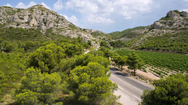 WS AERIAL View of landscape with wine yards and cars moving on road / St. Remy de Provence, Provence, France