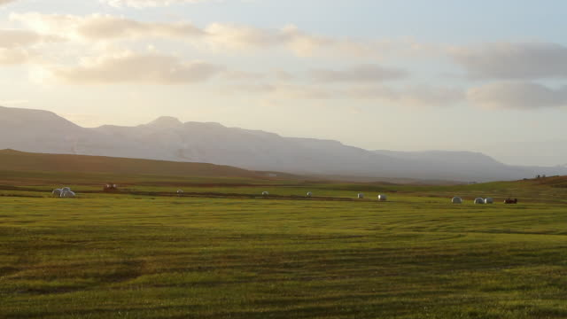 ws view of large tractor slowly moving in large field with mountains in distance / hverageroi, sudhurland, iceland - wiese stock videos & royalty-free footage