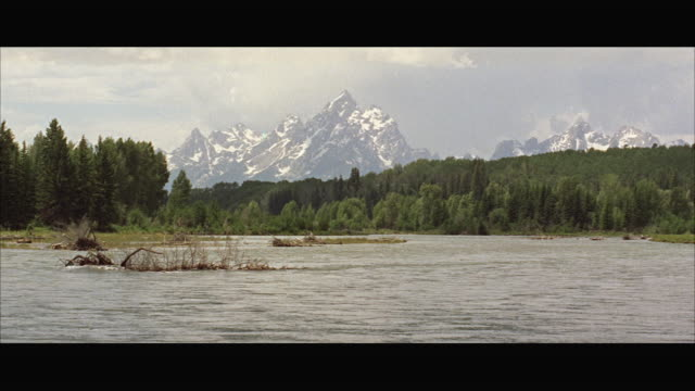 ms pan view of large valley with grand teton mountains in background - grand teton stock-videos und b-roll-filmmaterial