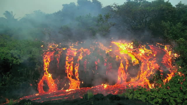 ws view of lava flowing through tropical forest / kalapana, hawaii, usa - burning stock videos & royalty-free footage