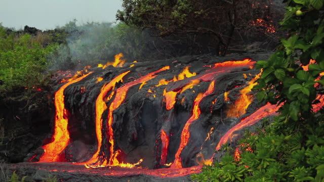 ws view of lava flowing through tropical forest / kalapana, hawaii, usa - lava stock videos & royalty-free footage