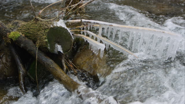 vídeos de stock, filmes e b-roll de view of log in stream with icicles hanging off the frozen branches. - pingente de gelo