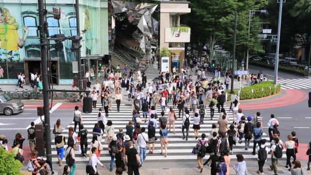 ws zo view of lots of people walking crossing in omotesando with vehicles running on street / shibuya, tokyo, japan - 移動中点の映像素材/bロール