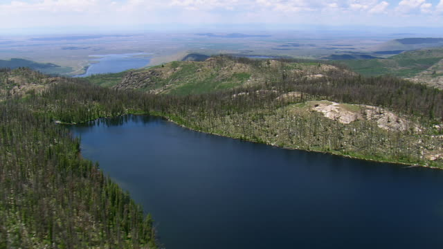 WS AERIAL View of Lovatt Lake besides broken trees / Wyoming, United States