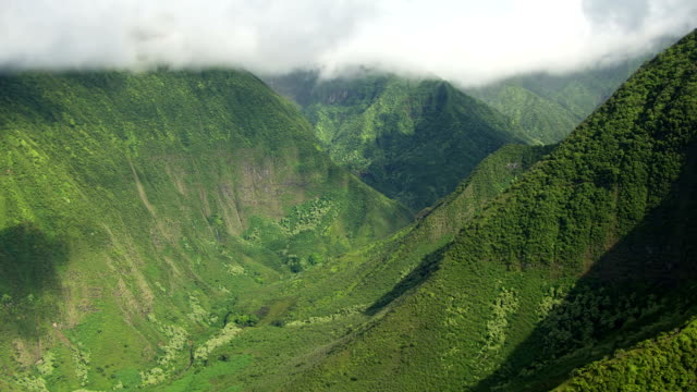 WS AERIAL View of lush mountains by the coast / Molokai, Hawaii, United States