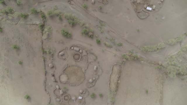 view of maasai people's village, tanzania, east africa - 草葺小屋点の映像素材/bロール