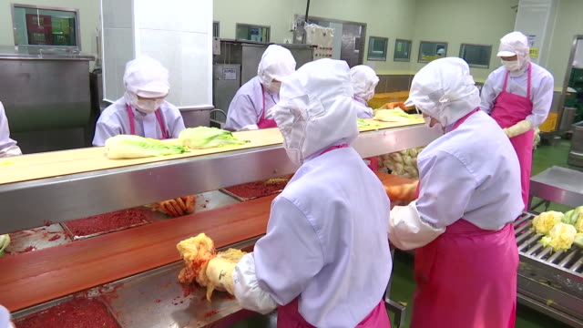 View of making Kimchi at Kimchi factory (Popular traditional fermented Korean side dish)